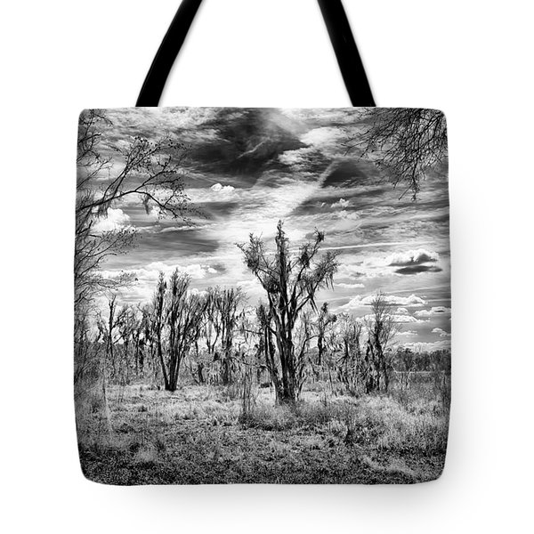 Tote Bag featuring the photograph Levy Lake by Howard Salmon