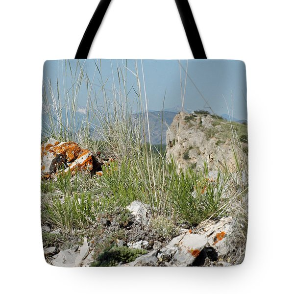 Lichen Covered Rocks At Missouri Headwaters State Park Montana Tote Bag
