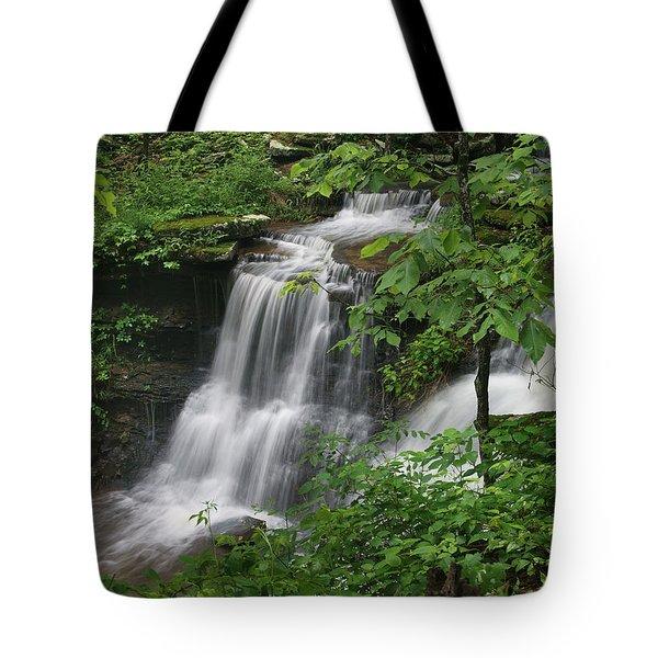 Lichen Falls Ozark National Forest Tote Bag