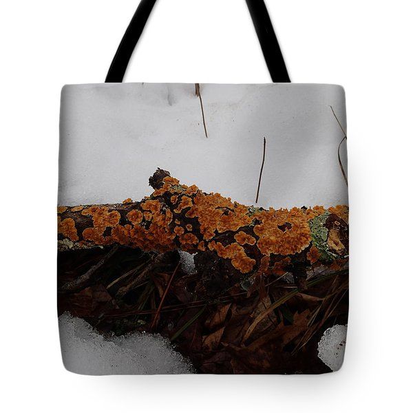 Lichen N'snow Tote Bag
