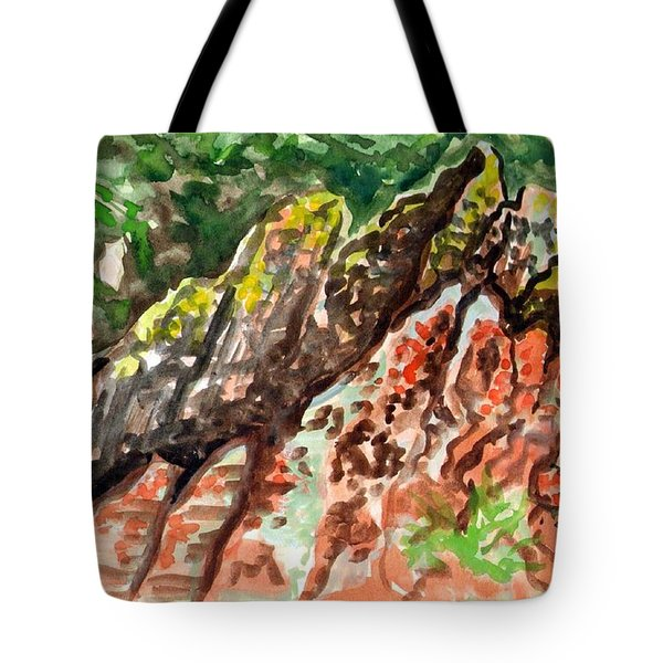 Tote Bag featuring the painting Lichen Rocks by Ashley Kujan