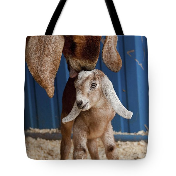 Licked Clean Tote Bag by Caitlyn  Grasso