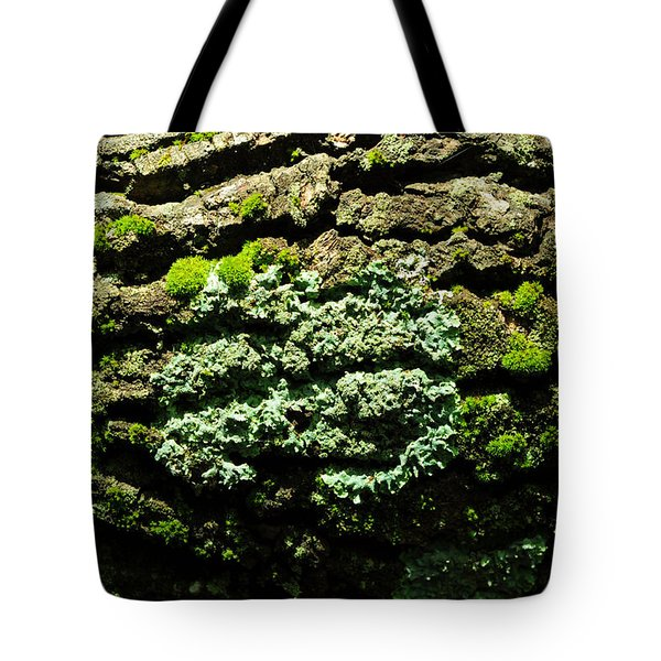 Life After Life Tote Bag