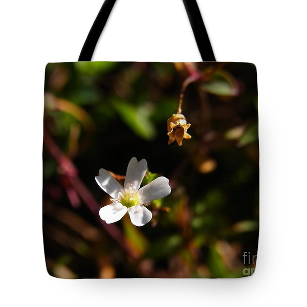 Life And Death Tote Bag by Agnieszka Ledwon