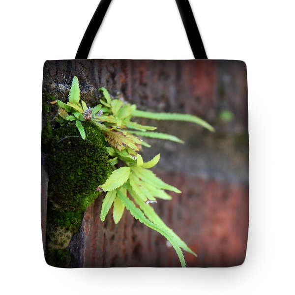 Life Between The Bricks II Tote Bag