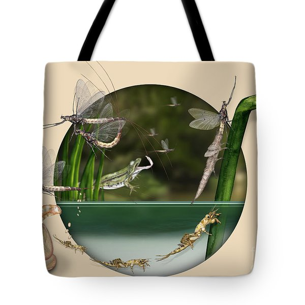 Life Cycle Of Mayfly Ephemera Danica - Mouche De Mai - Zyklus Eintagsfliege - Stock Illustration - Stock Image Tote Bag
