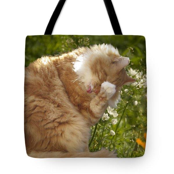 Life Is Tasty  Tote Bag