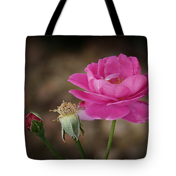 Tote Bag featuring the photograph Life by Lucinda Walter