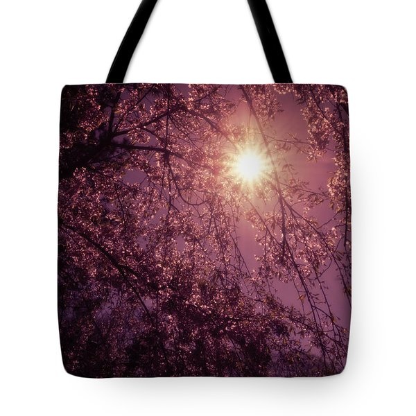 Light And Cherry Blossoms Tote Bag by Vivienne Gucwa