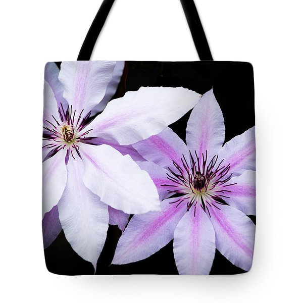 Light And Darkness Tote Bag by Parker Cunningham