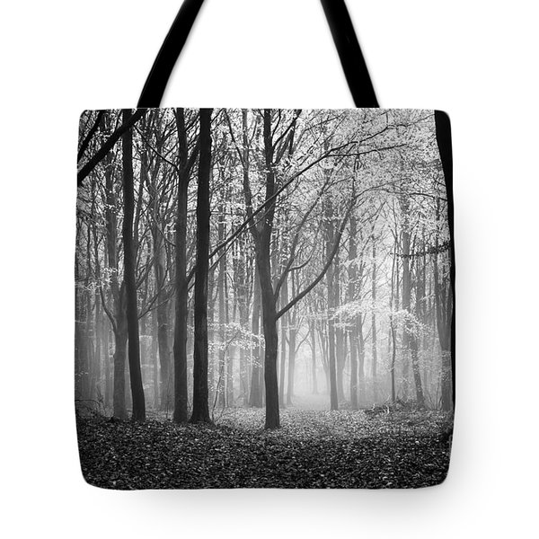 Light And Shadow Tote Bag by Anne Gilbert
