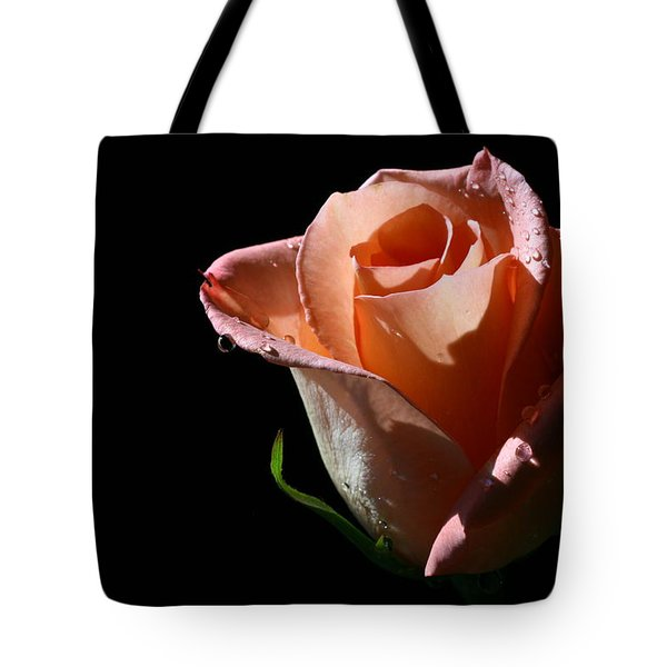 Tote Bag featuring the photograph Light Catcher by Doug Norkum