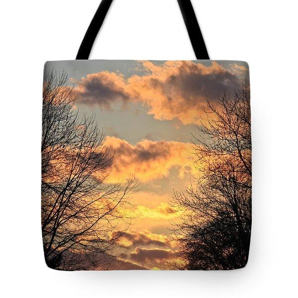 Light Catcher Tote Bag
