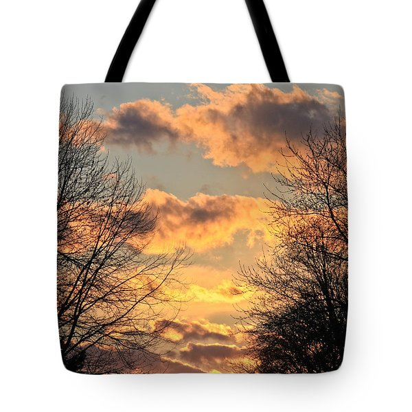 Light Catcher Tote Bag