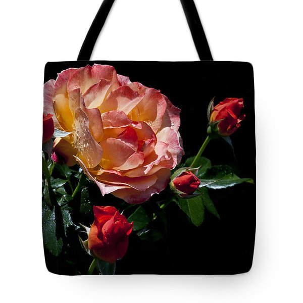 Tote Bag featuring the photograph Light Family by Doug Norkum