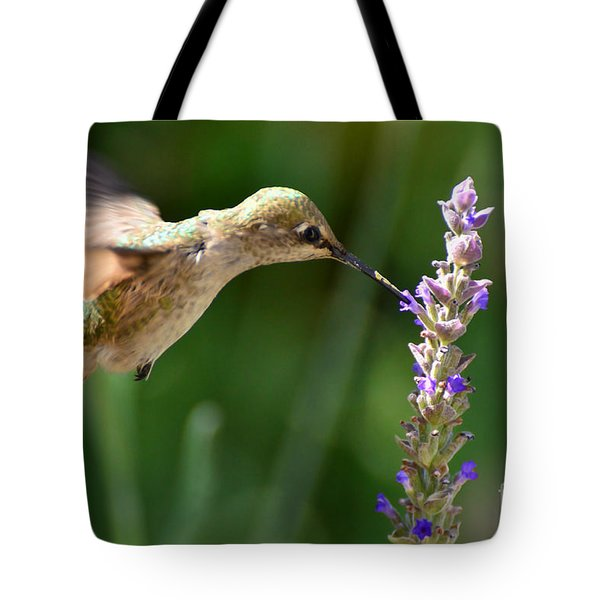 Light Filters Behind The Hummer Tote Bag