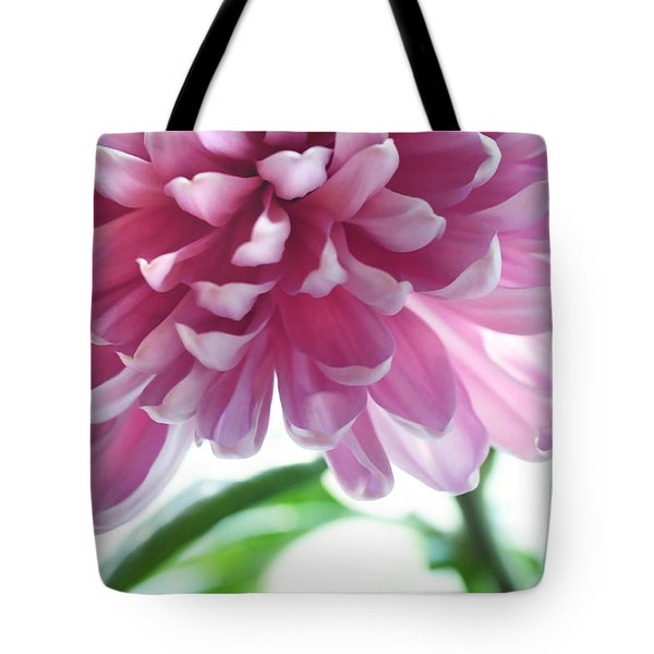 Light Impression. Pink Chrysanthemum  Tote Bag by Jenny Rainbow