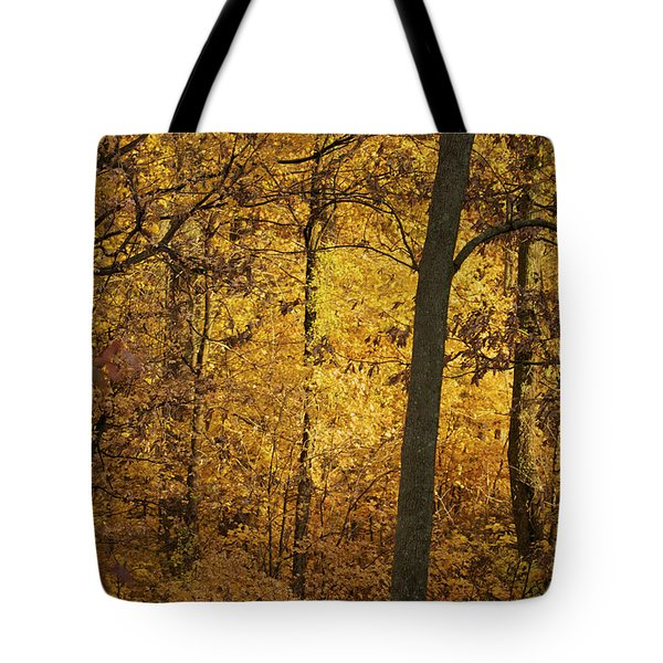 Light In The Forest Tote Bag by Jane Eleanor Nicholas