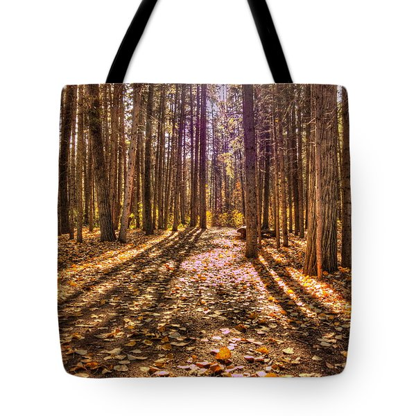Light In The Forest Tote Bag by Jim Sauchyn