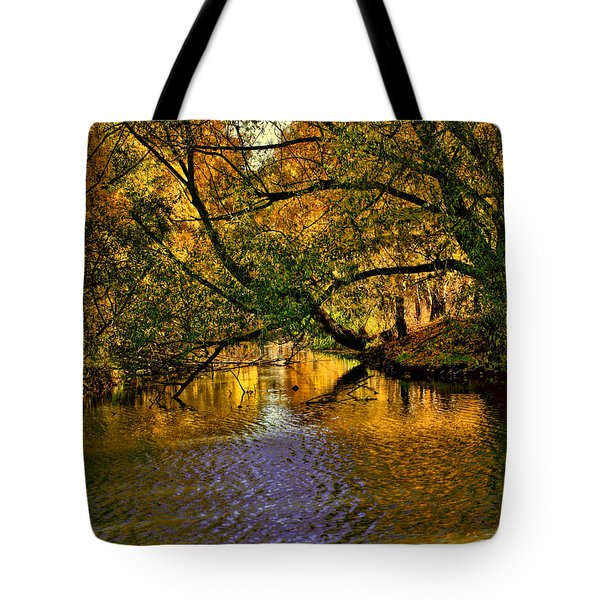 Light In The Trees Tote Bag by Leif Sohlman