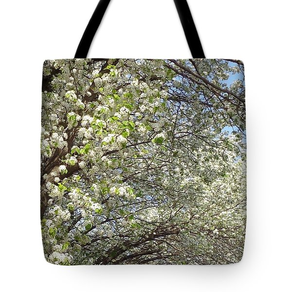 Light In The Tunnel Tote Bag by Christina Verdgeline