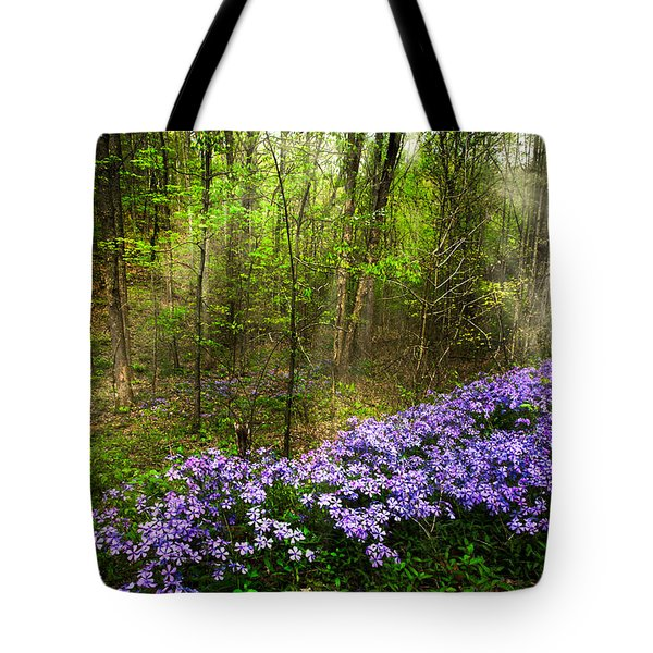 Light Of The Forest Fairies Tote Bag by Debra and Dave Vanderlaan