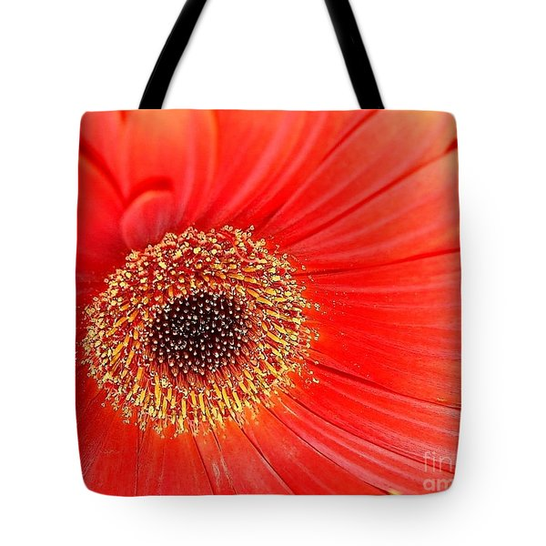 Tote Bag featuring the photograph Light On by Katy Mei