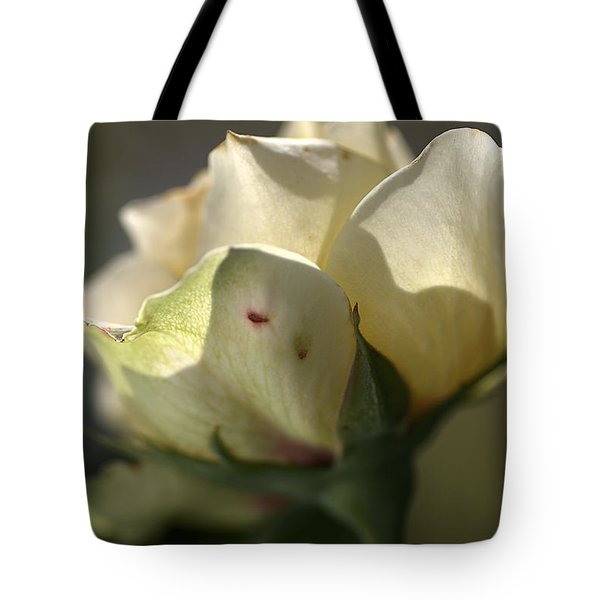 Light On My Face Tote Bag by Joy Watson