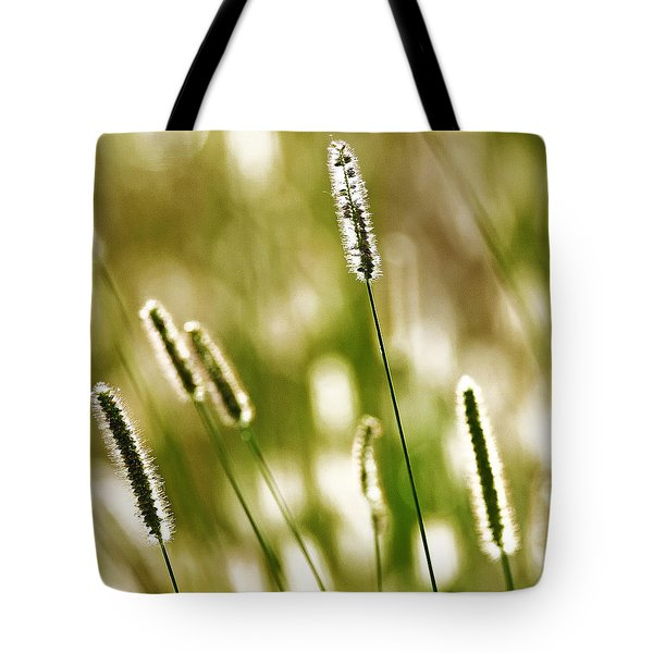 Light Play Tote Bag