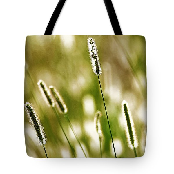 Light Play Tote Bag by Andy Crawford