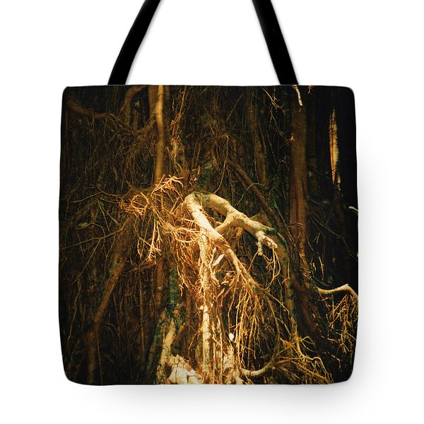Tote Bag featuring the photograph Light Roots by Evelyn Tambour