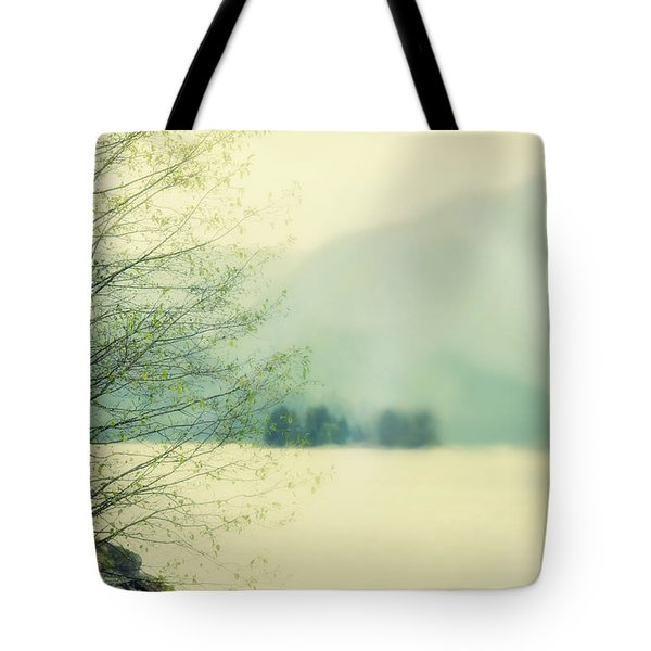 Light Streams Over A Mountain Tote Bag by Roberta Murray