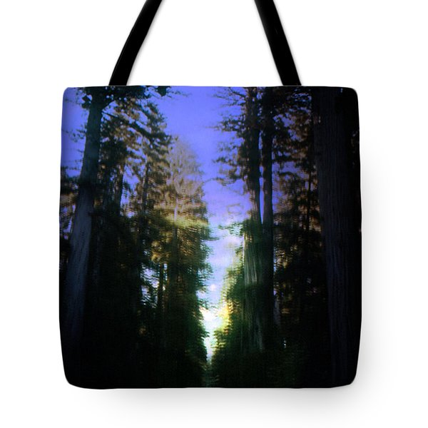 Tote Bag featuring the digital art Light Through The Forest by Cathy Anderson