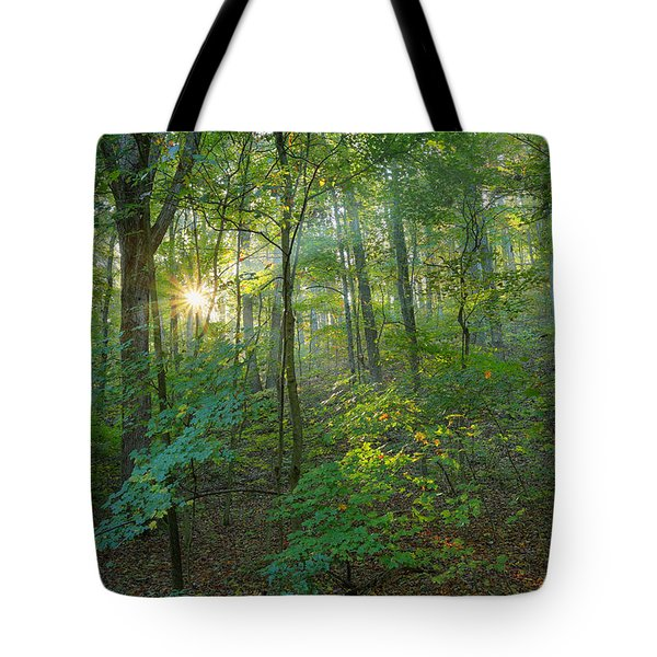 Light Up The Forest Tote Bag