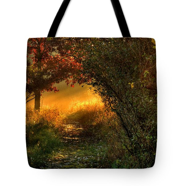 Lighted Path Tote Bag
