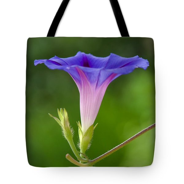 Lightened Tote Bag