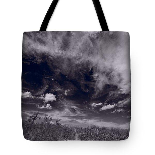 Lighthouse Beach Dunes Bw Tote Bag by Steve Gadomski