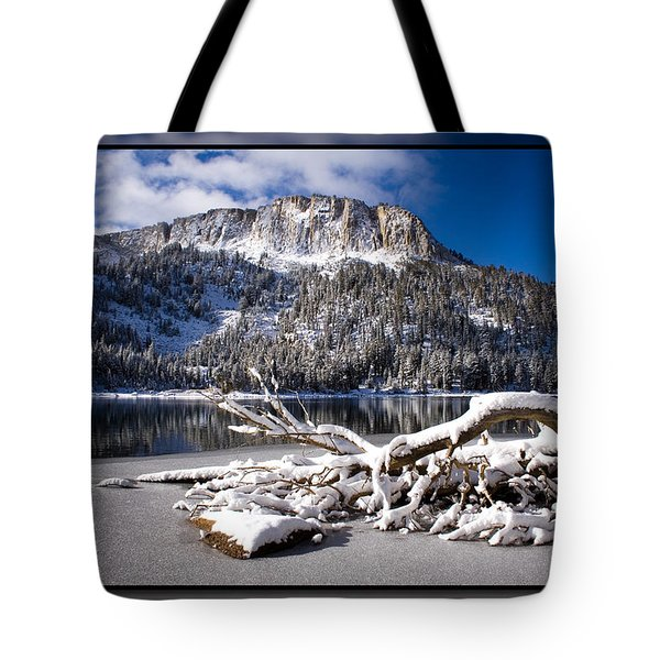 Lightly Powdered 2 Tote Bag by Chris Brannen