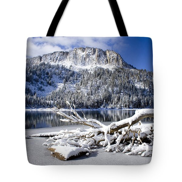 Lightly Powdered Tote Bag by Chris Brannen