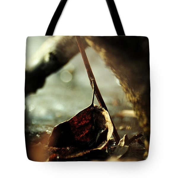 Like A Copper Ladle Scooping Up The Sun Tote Bag by Rebecca Sherman