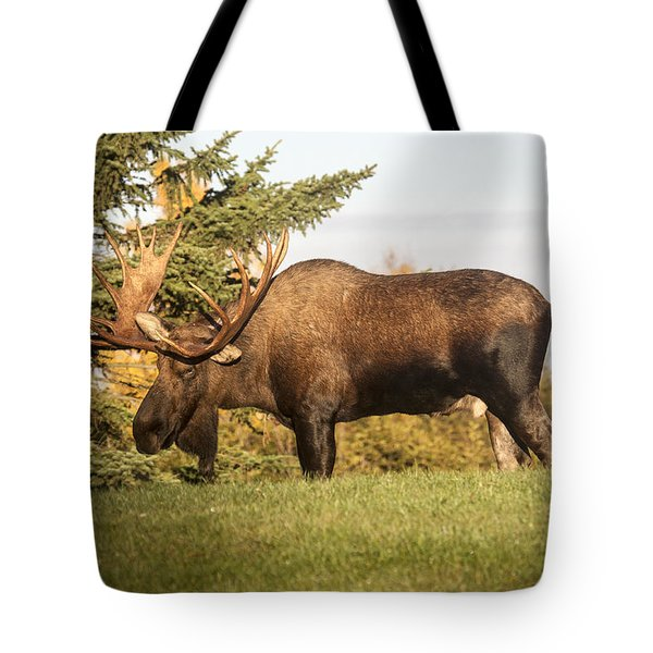 Like My Rack Tote Bag