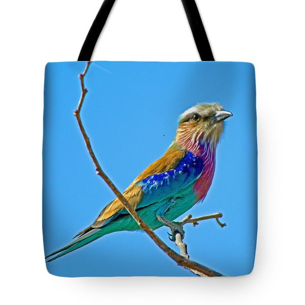 Lilac-breasted Roller In Kruger National Park-south Africa Tote Bag by Ruth Hager