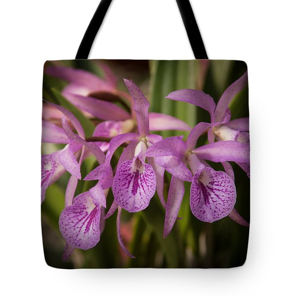 Tote Bag featuring the photograph Lilac Orchid Cluster  by Penny Lisowski