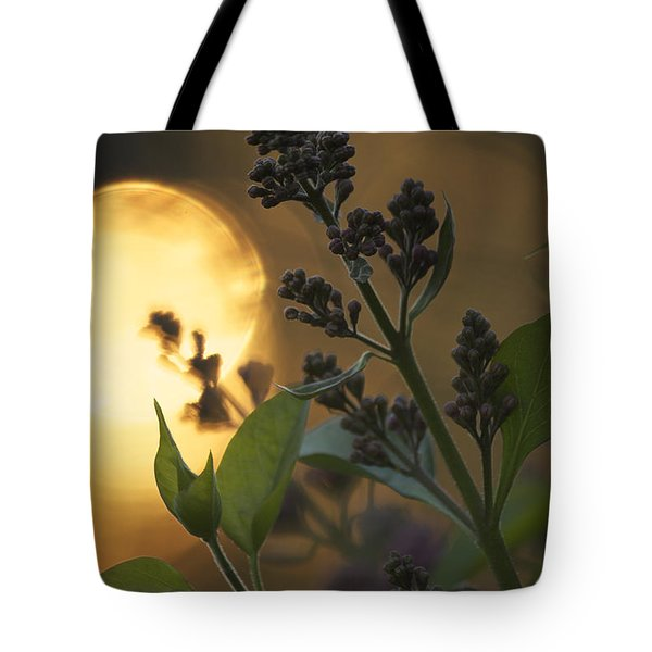 Lilacs At Sunset Tote Bag by Penny Meyers
