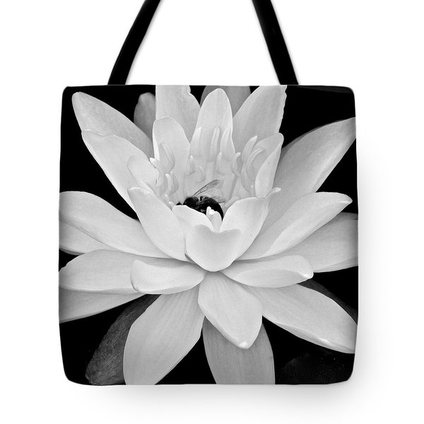 Lilly White Tote Bag by Frozen in Time Fine Art Photography