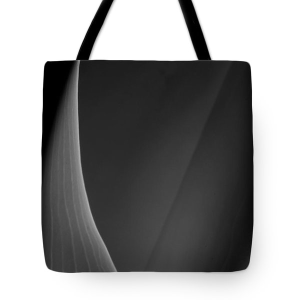 Lily 3 Tote Bag by Joe Kozlowski