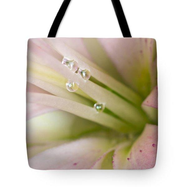 Lily And Raindrops Tote Bag by Melanie Viola