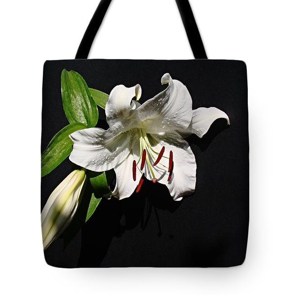 Tote Bag featuring the photograph Lily At Daybreak by Nick Kloepping