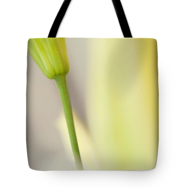 Lily Delight. Floral Abstract Tote Bag by Jenny Rainbow