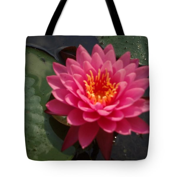 Lily Flower In Bloom Tote Bag by Michael Porchik